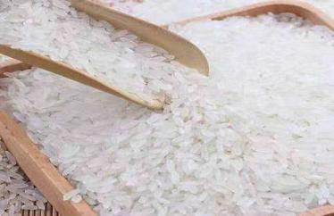 对于大米中的米虫如何进行预防和整治?