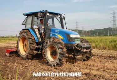 掌握稻谷种植小技巧收获满满