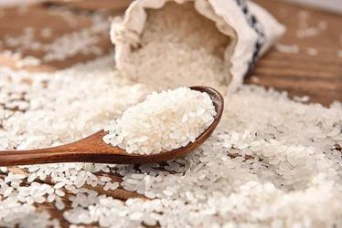 为何现在的大米不长虫